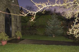 Picture of Christmas tree in churchyard